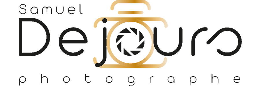 logo redaction web article site samuel dejours